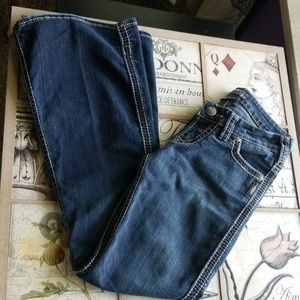 Nice Frances Flare Silver Jean's